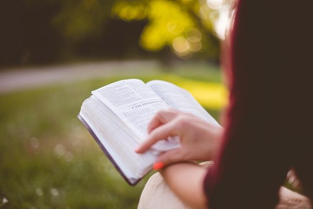 バトン され 感想 読書 は そして た 文 渡